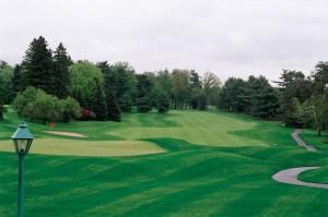 web_6539_golf-course-B0000982
