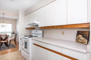 545 St Laurent Blvd Unit 604-large-015-17-15-1500x1000-72dpi